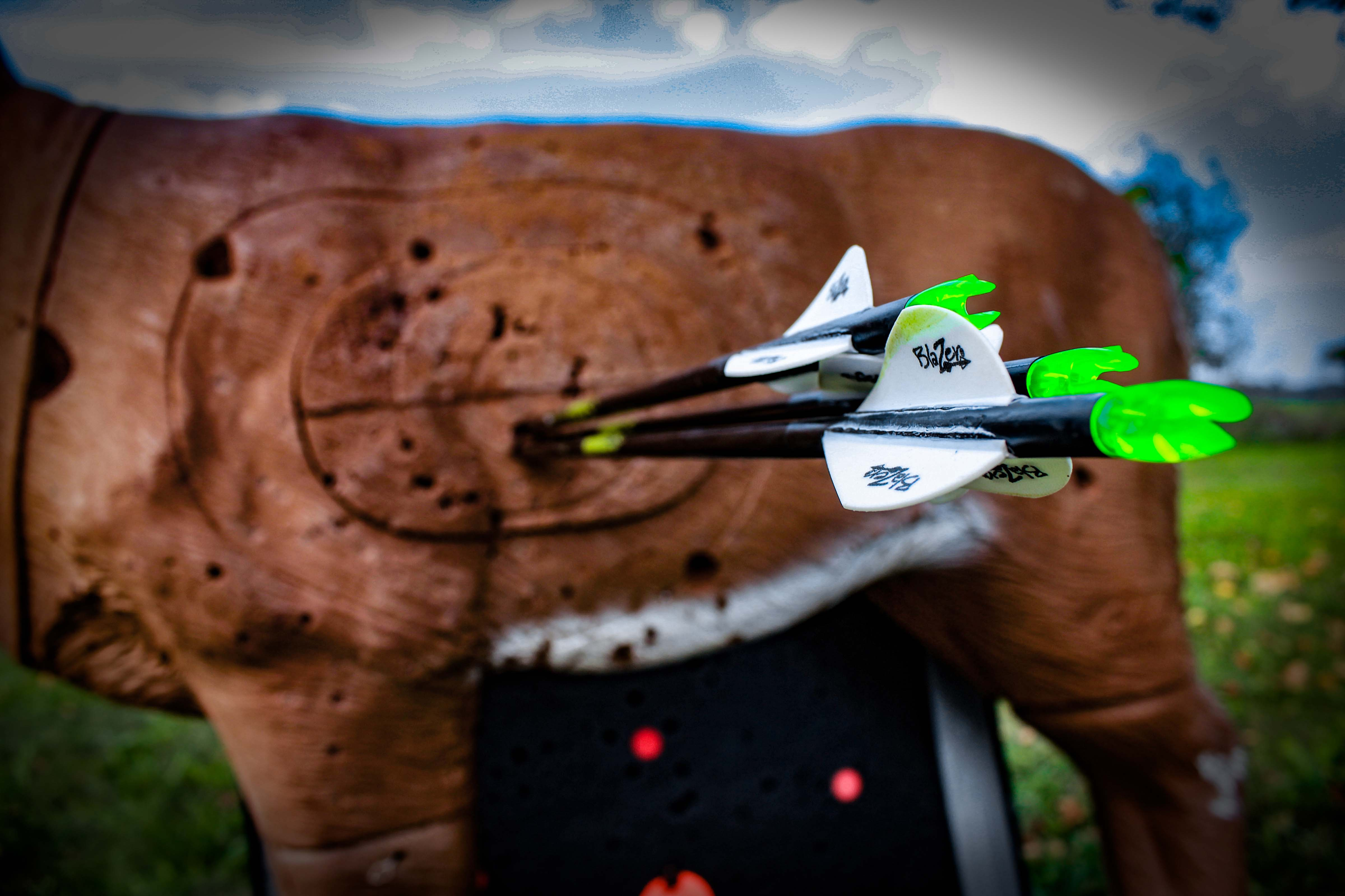 To ensure you can visualize proper shot angles, practice often with a 3-D target. Photo Credit: Tyler Ridenour