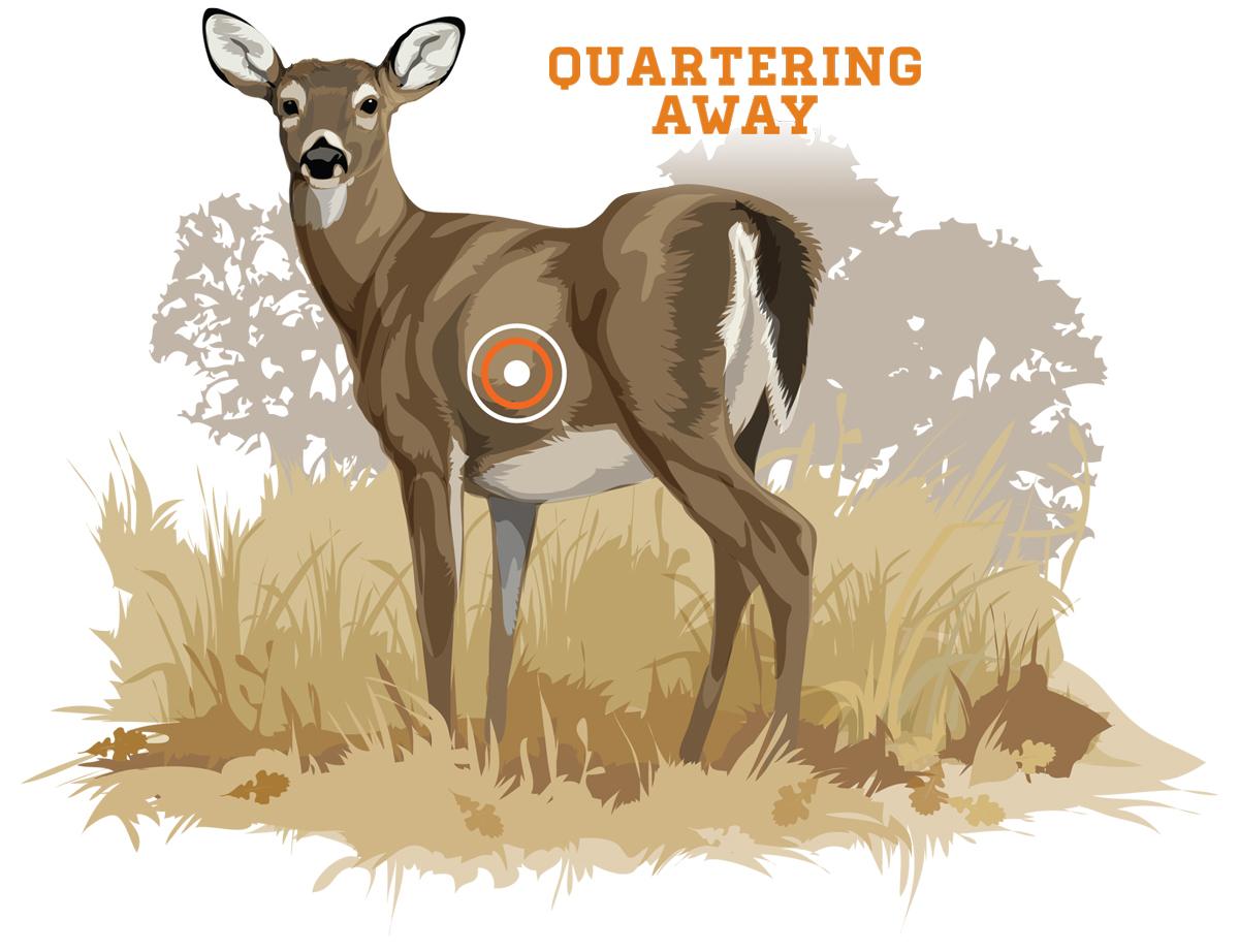The quartering-away angle is favorable, even most-preferred, for bowhunting. It exposes the vital area and presents a large target when the angle is slight to moderate. Photo Credit: Ryan Kirby