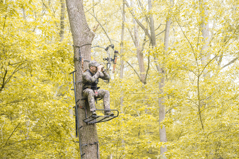 Help! I Fell From my Treestand. Now What?